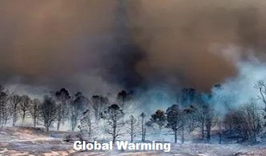 Photo of Global Warming And Human Activities