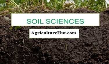 Photo of What is Soil Science and How to Improve Soil Properties