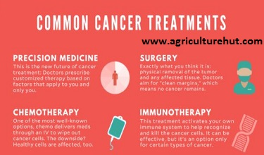 Photo of Why People Sourcing Alternative Cancer Treatment